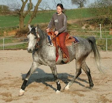 Cowgirl Geritten