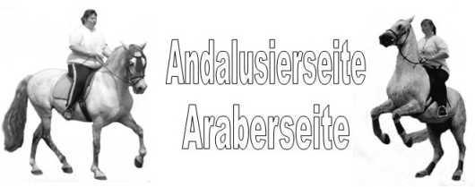 Gästebuch Banner - verlinkt mit http://www.araberseite.de